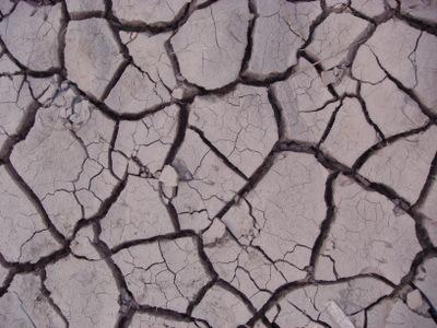 Las poblaciones que habitan las tierras áridas, que ocupan más del 40% de la superficie terrestre del planeta, se cuentan entre las más pobres del mundo y las más vulnerables frente al hambre, dice el Secretario General de la ONU en su mensaje.