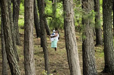 El Día Internacional de los Bosques está dedicado a promover la concienciación sobre la importancia de todos los tipos de bosques y árboles para nuestro bienestar económico, social, ambiental y cultural.