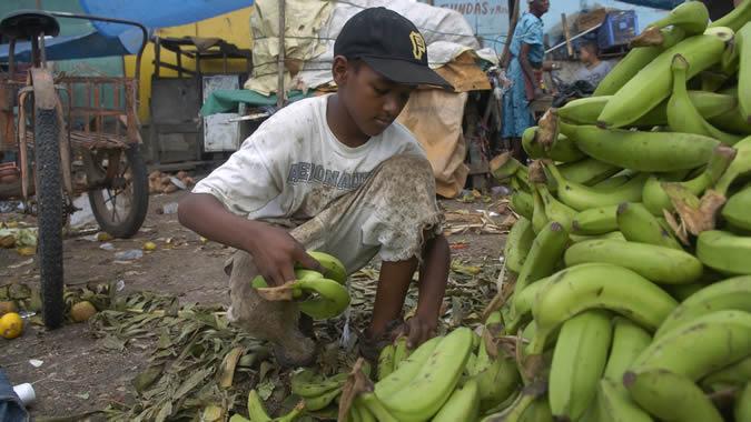 Foto de un niño trabajando