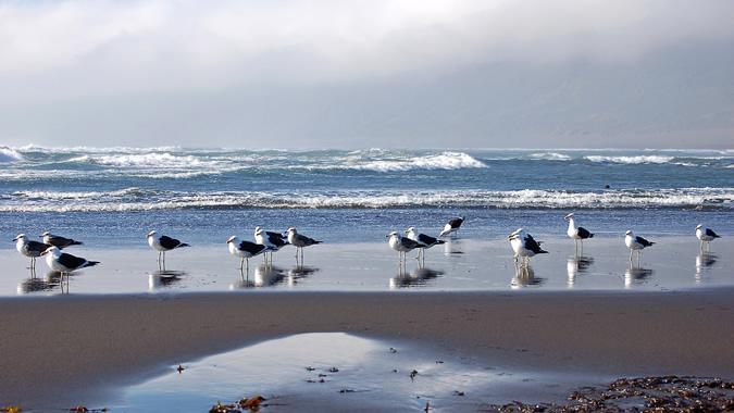 foto de la costa chilena