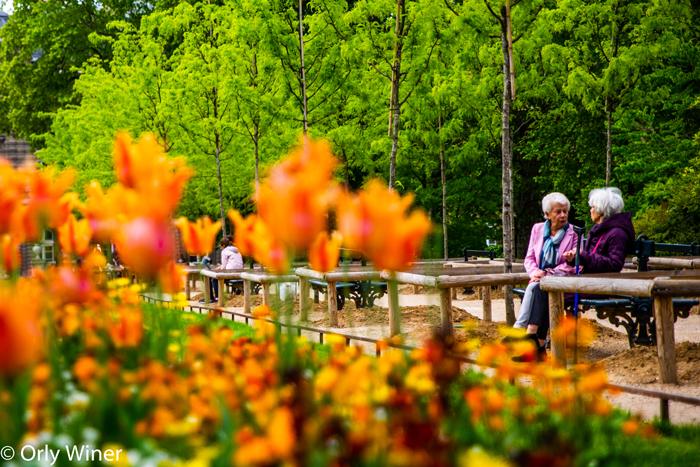 dos mujeres mayores sentadas conversando en un parque