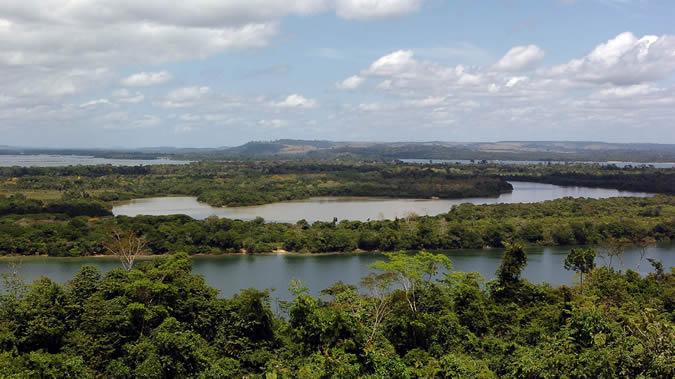 Vista de la selva amazónica de Brasil.