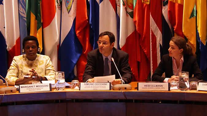 Panel de la reunión regional encabezada por Simone Cecchini.