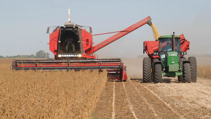 Foto de una cosecha de trigo