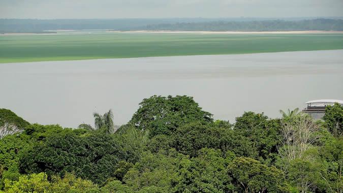 Imagem da cidade de Manaus na Amazônia brasileira.