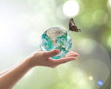 Imagen gmedio ambiente