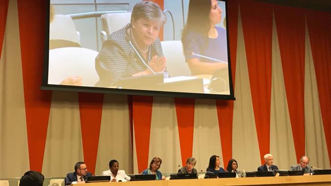 Imagen del side event del HLPF sobre democracia ambiental