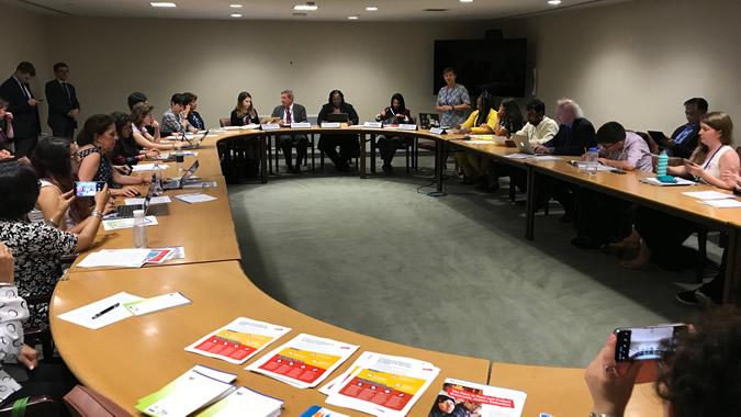 Reunión sobre el Acuerdo de Escazú, realizada en Nueva York el lunes 15 de julio de 2019