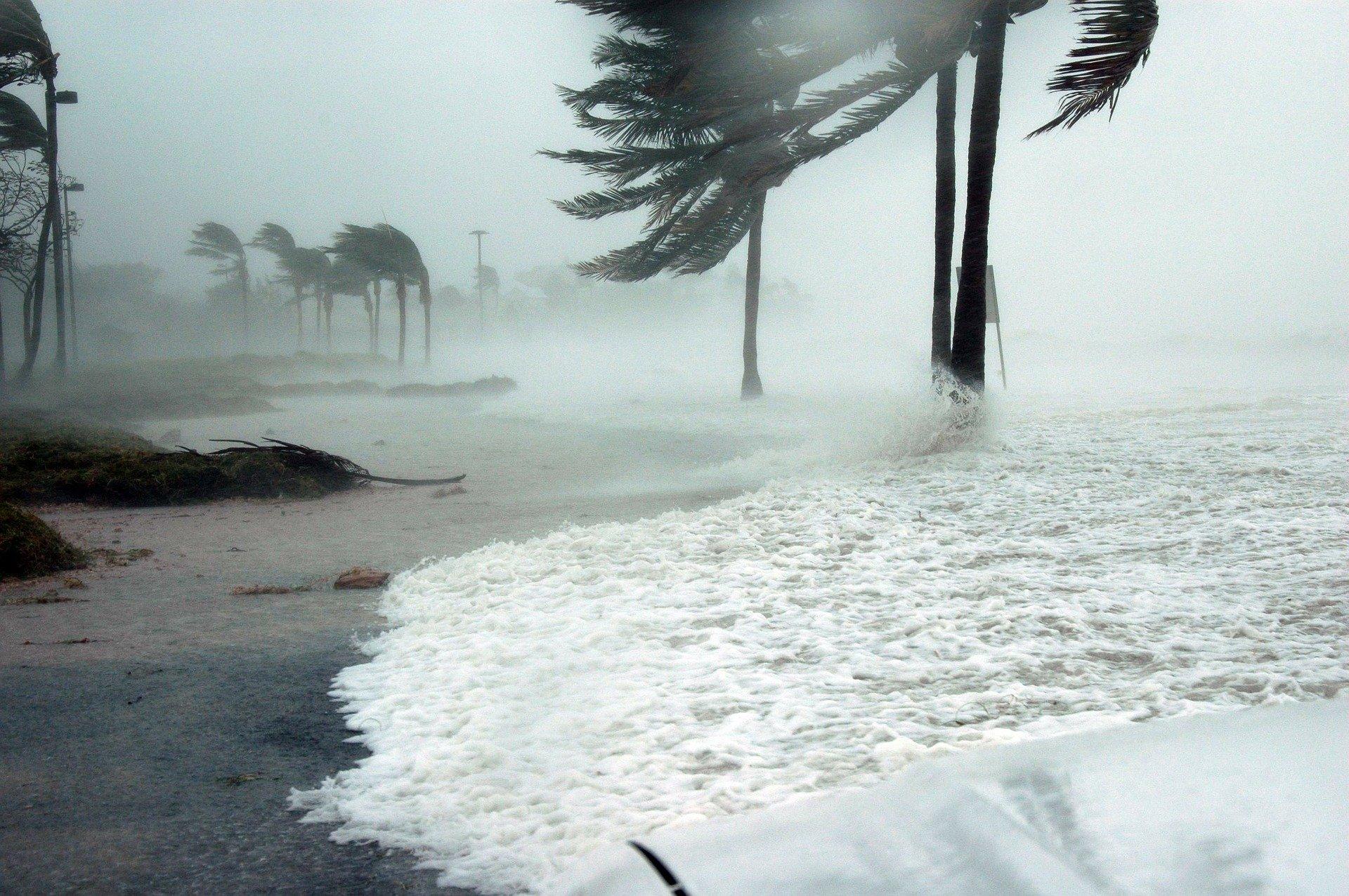 Foto de fuertes vientos en una isla del Caribe