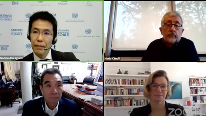 Image of the webinar organized by UNIDO