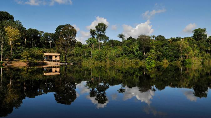 Foto con bosque y lago