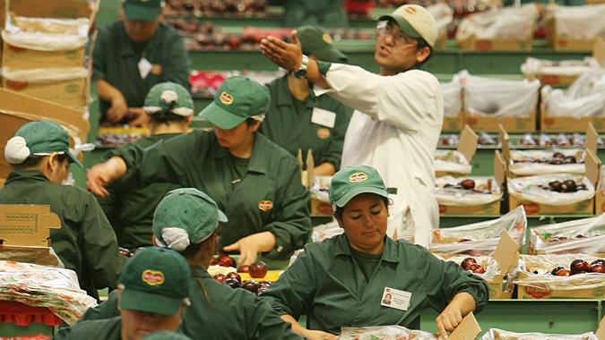 Desempleo podría caer hasta 6,0% en América Latina y el Caribe a ...