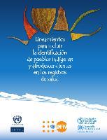 Lineamientos para incluir la identificación de pueblos indígenas y afrodescendientes en los registros de salud