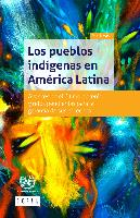 Los pueblos indígenas en América Latina. Avances en el último decenio y retos pendientes para la garantía de sus derechos. Síntesis