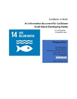 Caribbean in Brief: an information document for Caribbean Small Island Developing States