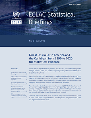 Forest loss in Latin America and the Caribbean from 1990 to 2020: The statistical evidence
