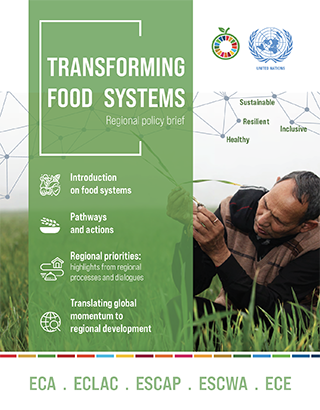 Transforming food systems: Regional policy brief