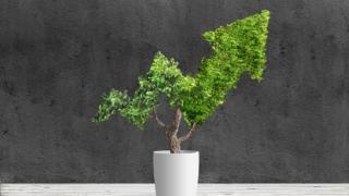 Visión para la acción climática y recuperación verde: Hallazgos del evento regional conjunto
