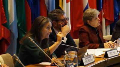 Seminario Intercambio de experiencias y fortalecimiento de capacidades humanas e institucionales, la cooperación sur-sur entre México y Chile en biodiversidad