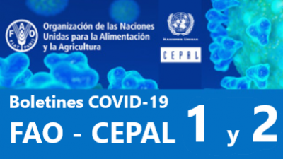 Boletines COVID-19 FAO - CEPAL