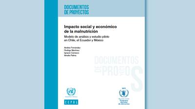 Impacto social y económico de la malnutrición: modelo de análisis y estudio piloto en Chile, el Ecuador y México