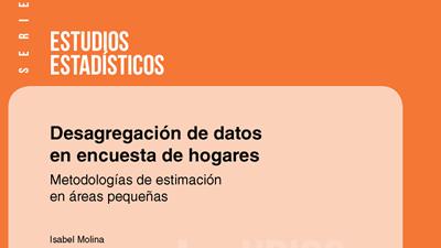 Desagregación de datos en encuesta de hogares: metodologías de estimación en áreas pequeñas