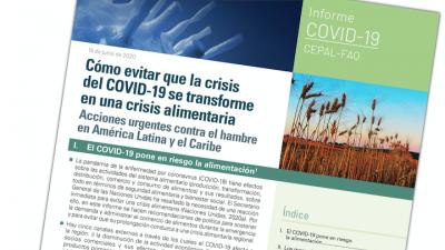 Cómo evitar que la crisis del COVID-19 se transforme en una crisis alimentaría