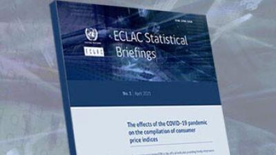 ECLAC Statistical Briefings. Nº 1 | April 2021