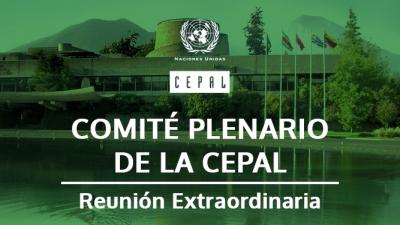 comite_plenario reunionextraordinaria