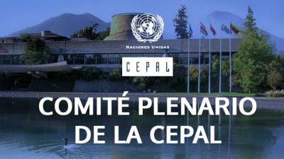 comité plenario