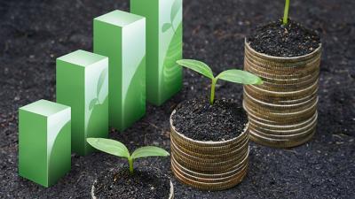 Desarrollo sostenible-sustentable