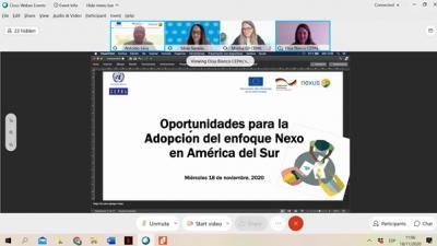 Seminario Virtual Oportunidades para la adopción del enfoque del Nexo Agua, Energía y Alimentación en América del Sur