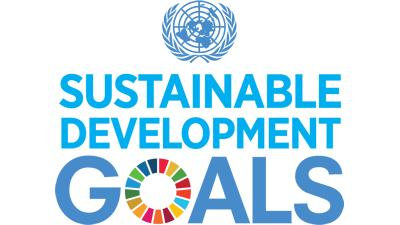 Inter-agency and Expert Group on Sustainable Development Goal Indicators (IAEG-SDGs)
