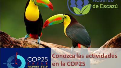 cop25_v1.jpg
