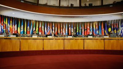 Foto testera Foro de los Países Desarrollo Sostenible 2021