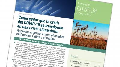 Portada documento FAO-CEPAL