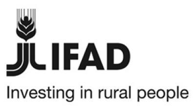 Imagen banner IFAD