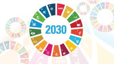 Grupo de Coordinación Estadísticas ODS