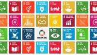 logos ODS en espanol