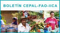 Banner Boletín CEPAL FAO IICA