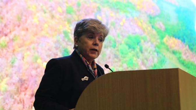 Alicia Bárcena, Executive Secretary of the Economic Commission for Latin America and the Caribbean (ECLAC).
