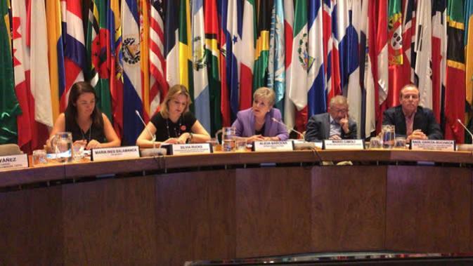 Fotografía del panel de la reunión.
