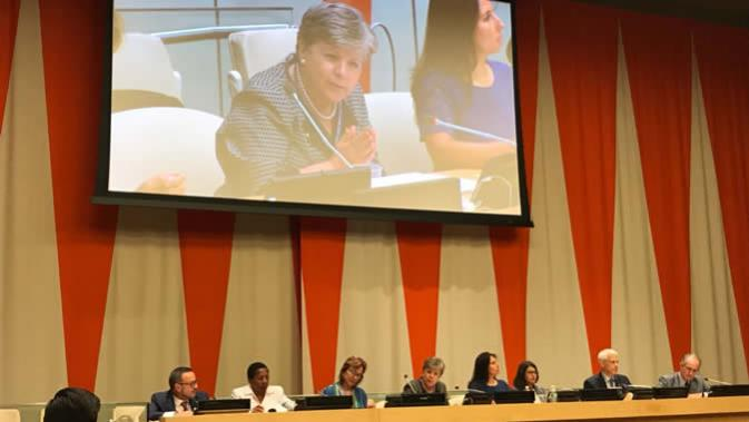 Image of the side event on environmental democracy at HLPF 2018