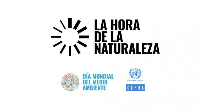 Banner Día Mundial del Medio Ambiente 2020