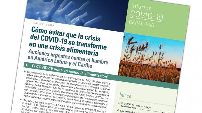 Portada documento FAO-CEPAL