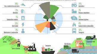 Infografía sobre huella de carbono