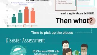 Damage and Loss Assessment infographic