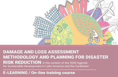 Damage and Loss Assessment Methodology and Planning for Disaster Risk Reduction