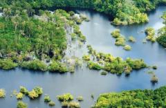 biodiversidad2.png