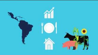 Adaptación al cambio climático en el sector agropecuario